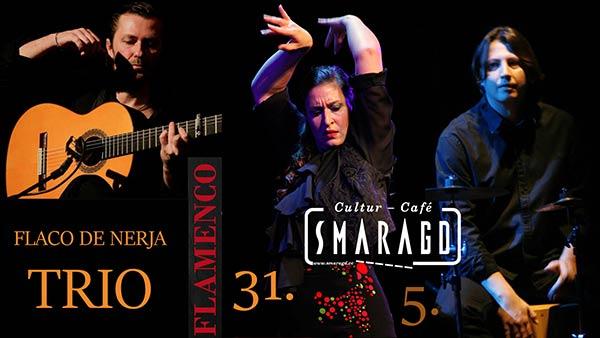 ccsmaragd-linz-flacodenerja_trio